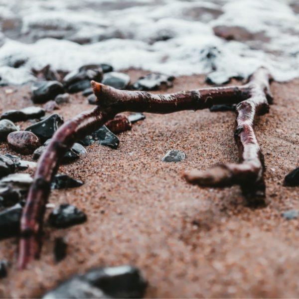 driftwood-fragrance