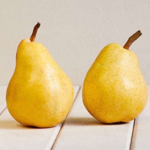 French Pear (1)
