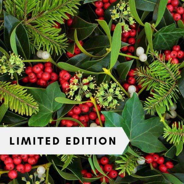 holly-mistletoe