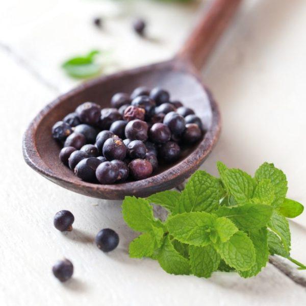juniper-berry-and-mint