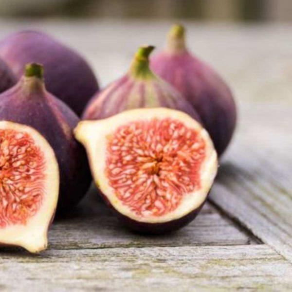 Rustic Fig